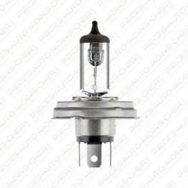 LAMPE R2H (12V 45/40W P45T41)
