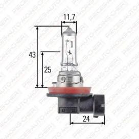 LAMPE H11 (24V 70W PGJ 19-2)